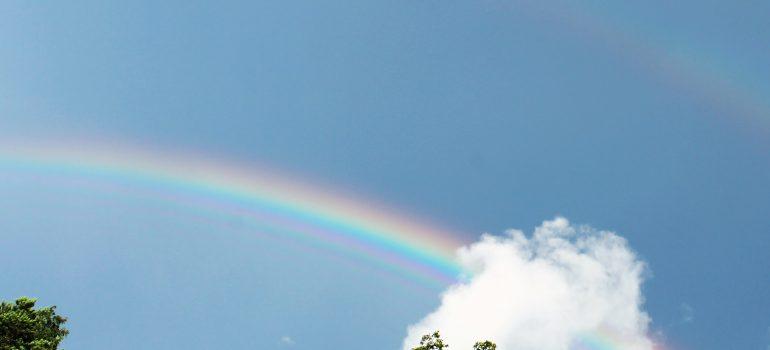 Regen-Bogen-Zeit – Die farbenfrohe Botschaft der Hoffnung